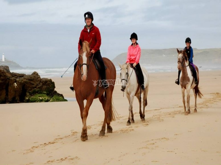 Try the amazing experience of riding a horse on the beach