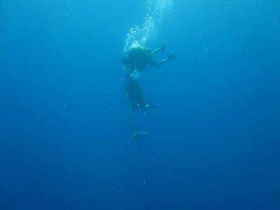 PADI Rescue Diver in Marbella