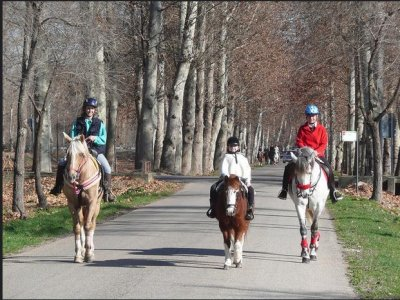 Horse Riding + Visit La Alhambra in Granada