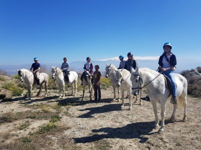 Horseback trip through Granada 1 hour