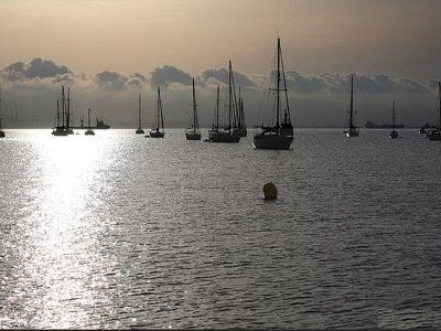 Sailing boat ride for companies in Andalusia