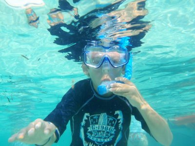 Snorkelling school trip from a boat