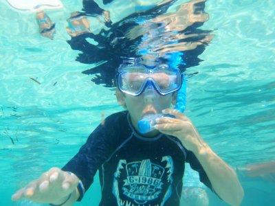 Snorkelling school trip from a boat