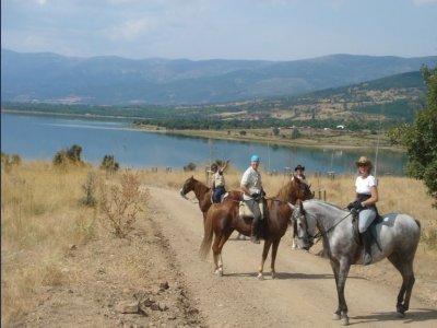 Horseride in Lozoya valley for schools, 1h