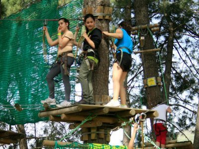 2 tree-top circuits in El Valle del Jerte