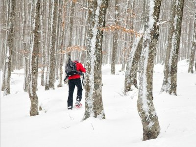Snowshoeing in Jaca for a weekend