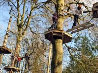 Tree top canopy course