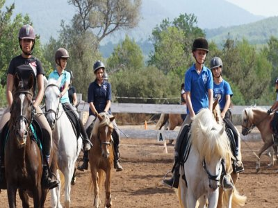 1h Horse Ride Tour in Ibiza
