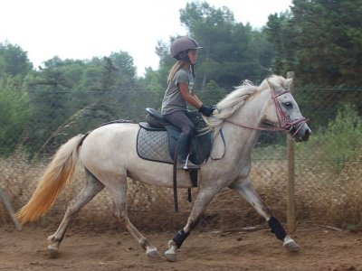 2 hours horse ride tour in Ibiza