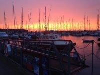 The marina in sunset