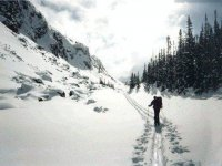 Cross country skiing is greaat exercise.