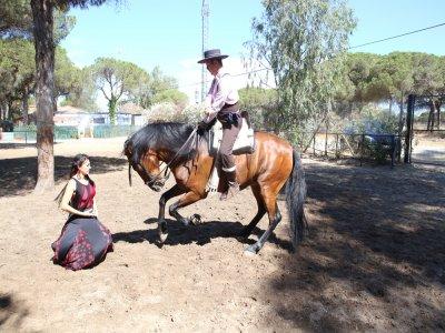 Rociero path in Doñana Show & lodging