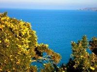 Beautiful coastline sights