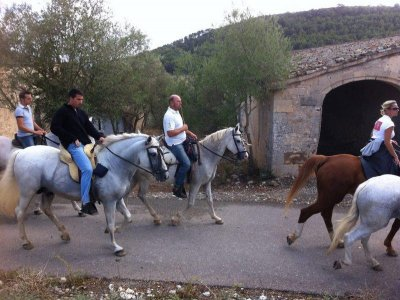 Horse riding trip Mallorca barbecue+show