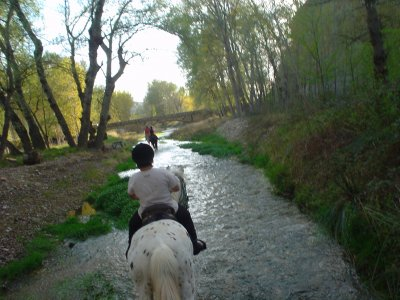 Special Couples: 1h of horse riding in Novallas
