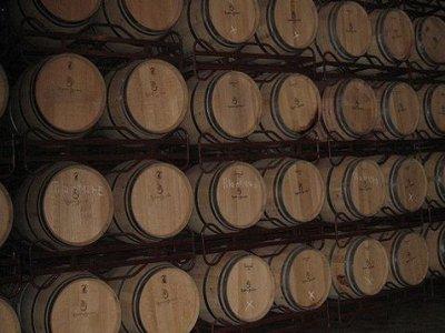 Visit a cellar + Jumilla wine tasting, Murcia