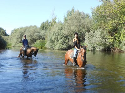 Horse route and picnic for Valentine's day