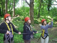 Our canopy course is a team building exercise
