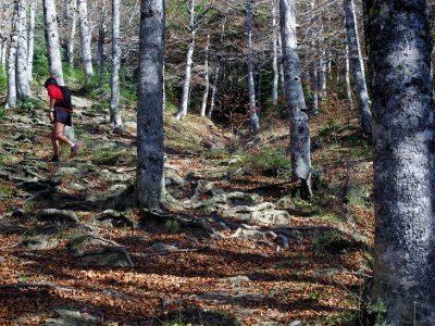 Trail running in Pyrenees