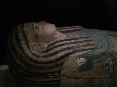 Archaeology Museum, Egypt Section, Children Fee