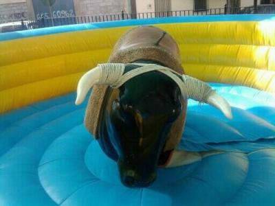 Mechanic bull for kids in Granada