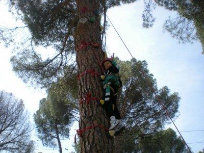 Adventure Park in Pelayos. 4 Junior Circuits