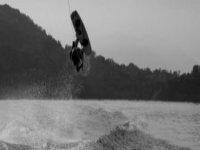 Wild stunts