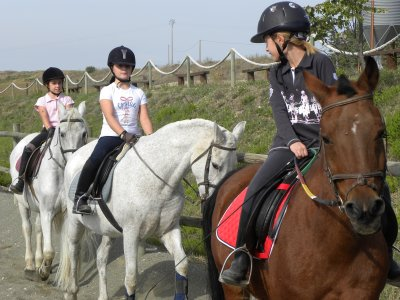 Horse riding camp in Tafalla