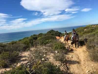 Horse Riding in Conil de la Frontera 90 min