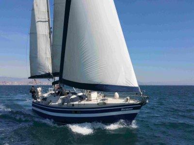 Sailing Regatta in Alicante Bay w. Snack