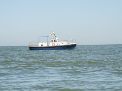 3h boat tour by Cádiz's coast.