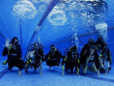 Sureste Divers