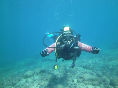 Nocturnal diving trip Benidorm, no equipment