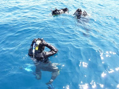 Bonus 5 scuba-diving no equipment Benidorm