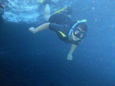 Snorkeling in Natural Park of Benidorm
