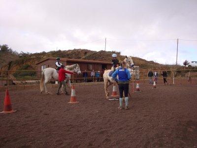 1h horseride in La Laguna