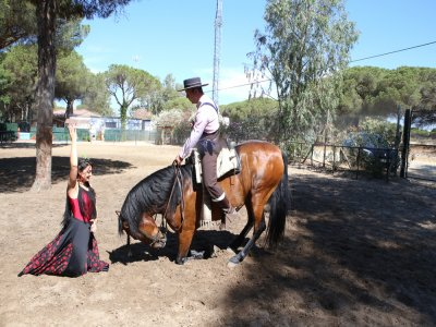 Andalusian equestrian show w drink Mazagón 2 hrs