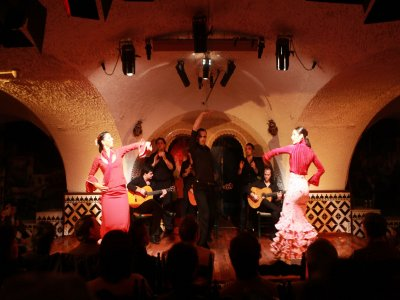 Tapas and Flamenco in Madrid