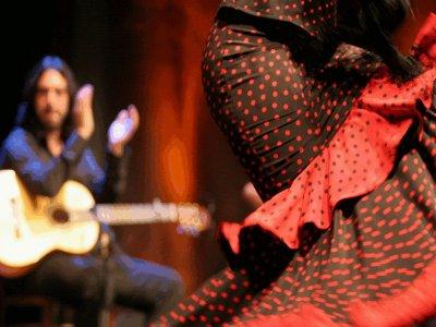 Tour around Madrid: wine tasting & flamenco class