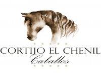 Cortijo El Chenil Caballos Clases de Equitación