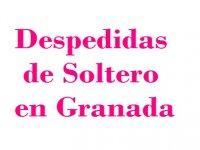 Despedidas de Soltero en Granada Canoas
