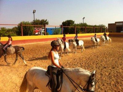 Learn Horse Riding, 10 Classes Pass in Lliria