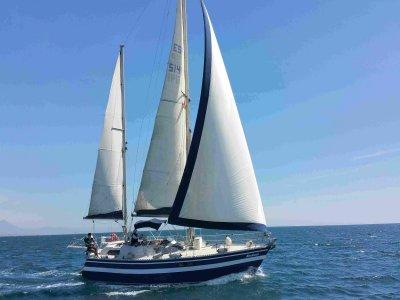 Sailing course Alicante 8 hours