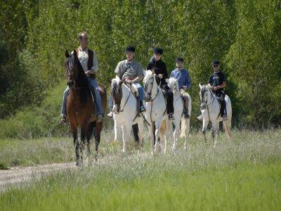 Horseback Route Montroig Visit The Hermitage sXII