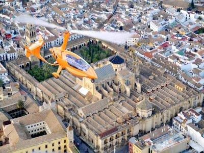 Falcon View Tours Paseo en Helicóptero