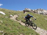 Downhill Jaunts