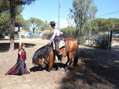 Equestrian and flamenco show for weddings