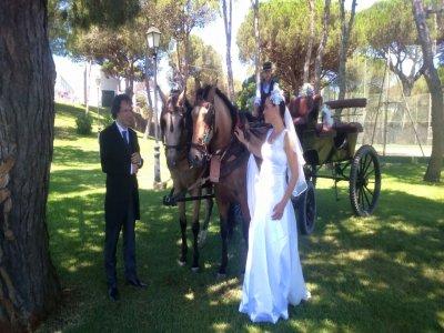 Wedding Horse Carriage Tour in Huelva