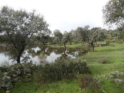Hiking journey in La Comarca de la Vera