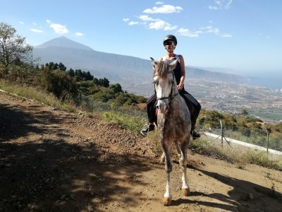 Horse Route 4 Hours La Orotava NO Residents